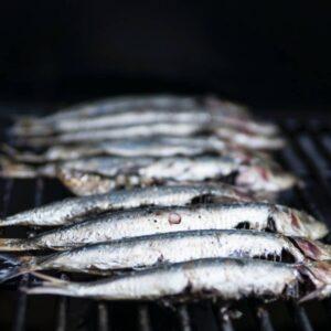 Allergitest Fisk