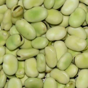 allergitest soja