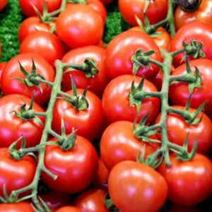 Allergitest Tomat